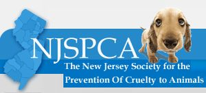 Image result for spca new jersey