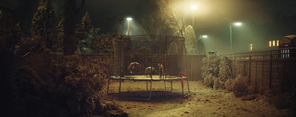 In the video a little girl is gifted a trampoline for Christmas. But before she wakes up, the local foxes spend the night jumping and bouncing on it.