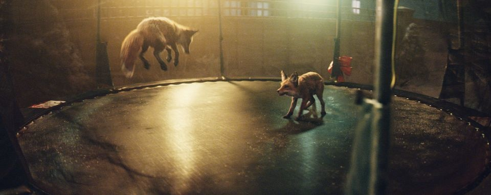 The foxes were made using CGI to make the foxes appear real.