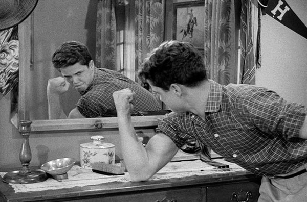 Tony Dow Had No Acting Experience Prior To This Show