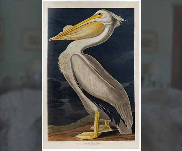 Bacall's Pelican Painting Sold For $173,000