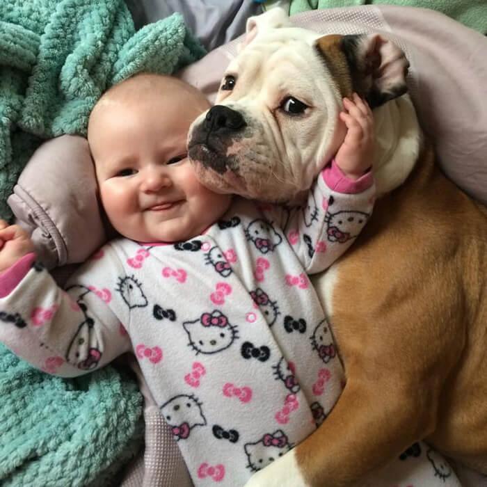 tiny-baby-big-dog-21.jpg