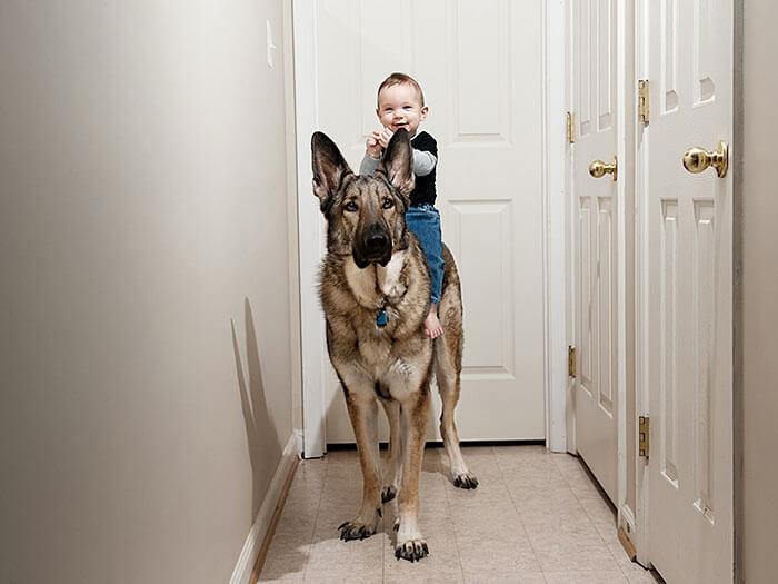 tiny-baby-big-dog-31.jpg