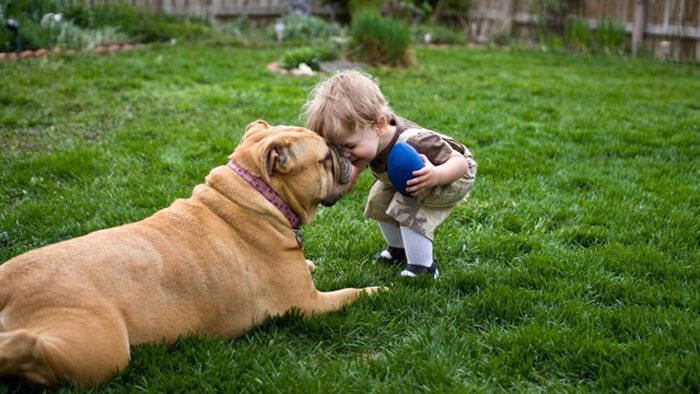 tiny-baby-big-dog-36.jpg
