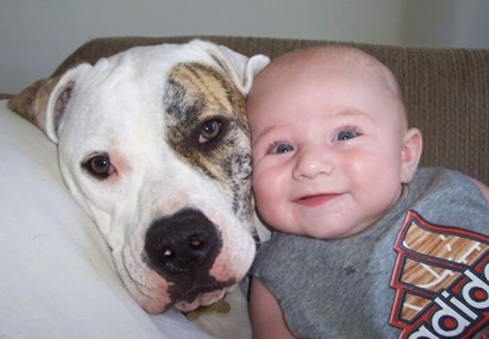 tiny-baby-big-dog-37.jpg