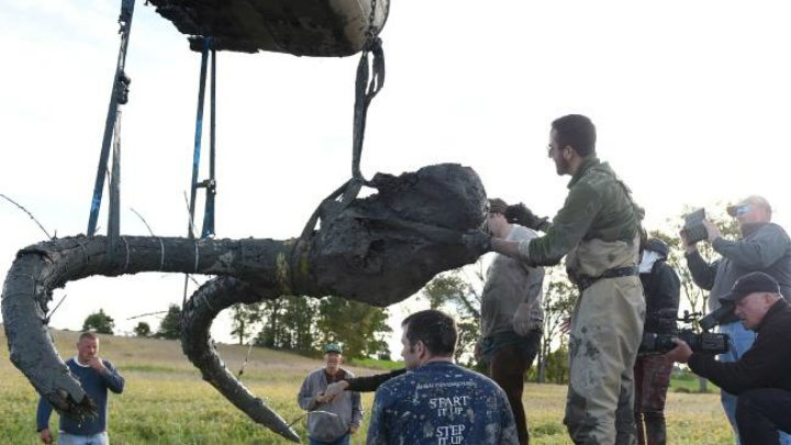 Farmer's mysterious discovery - Michigan mammoth