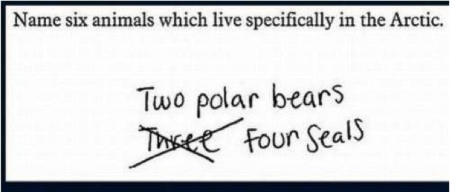 This Answer Is Technically Right