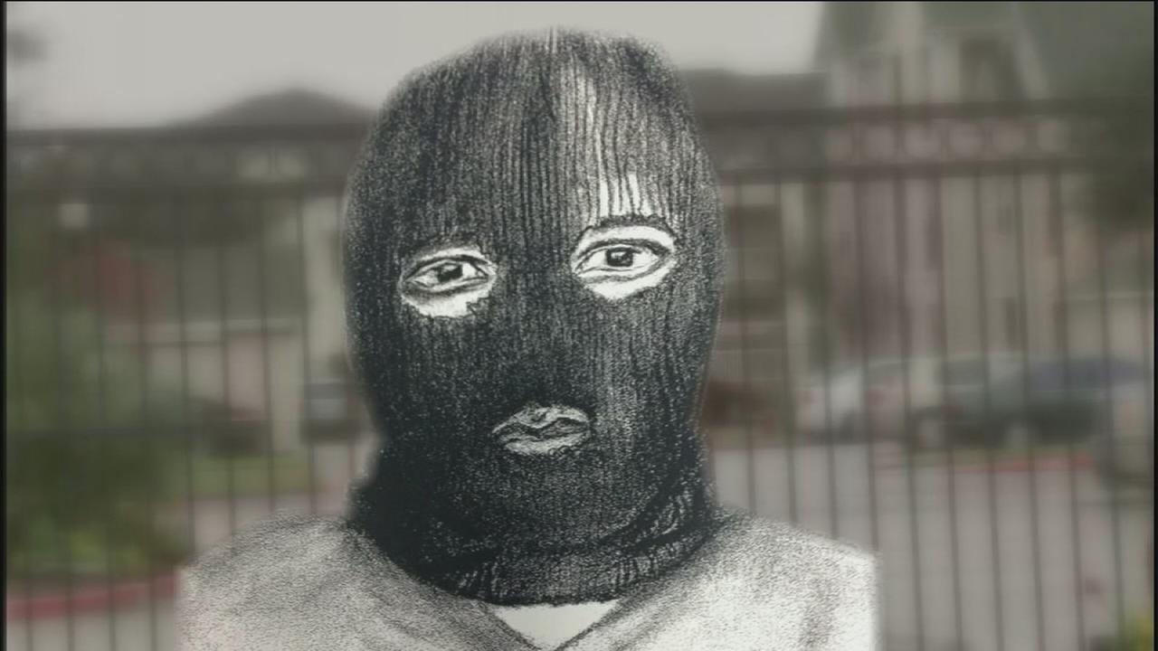 Image result for ski mask robber