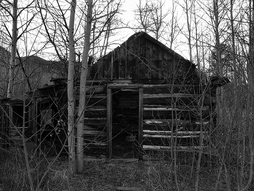 Image result for abandoned cabin in the woods