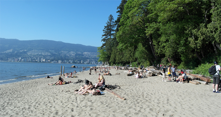 Image result for vancouver stanley park beach