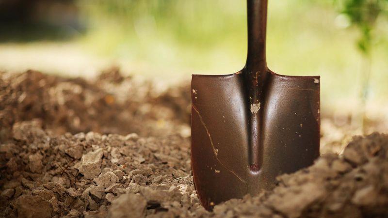 Image result for shovel dig