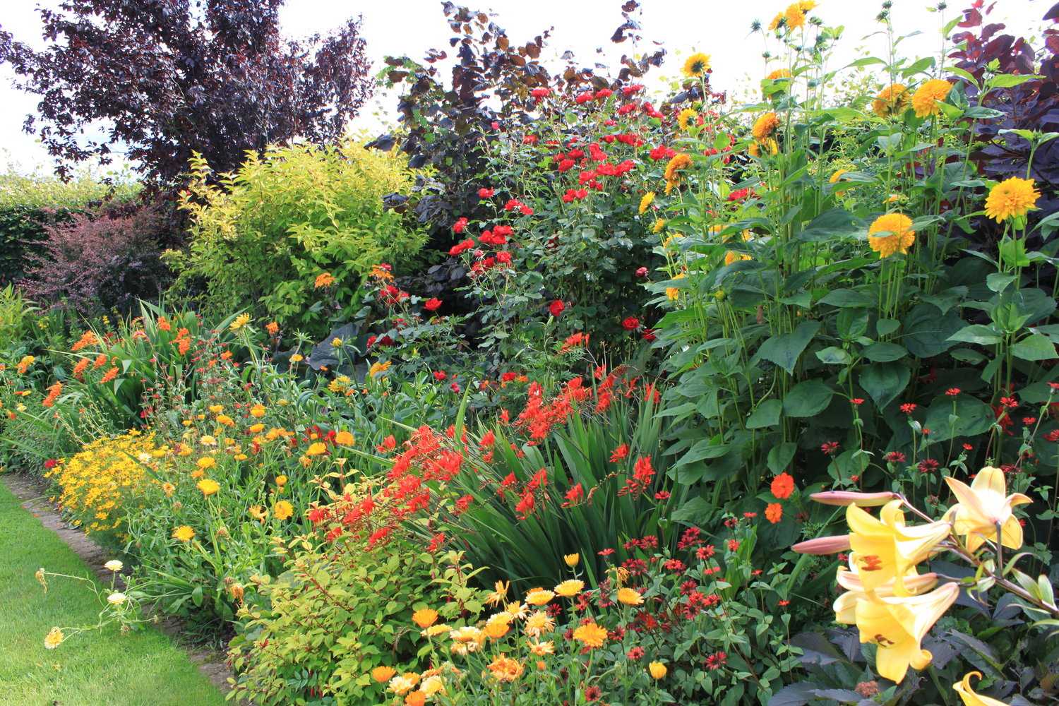 Image result for garden