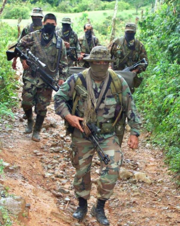 jungle poachers
