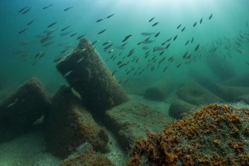 Image result for the city of Thonis-Heracleion