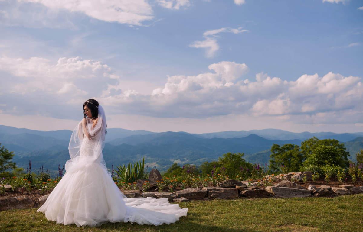 Image result for wedding plans