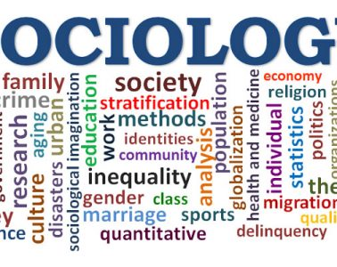 sociology jobs